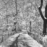 Scenic winter landscape with walkway