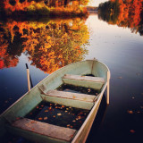 Rowboat and autumn leaves