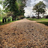 The Paved Road to the Old Panamá City Ruins