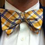 Bow tie, yellow, dress up, professional,
