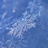 Close-up of snow flakes