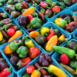 savannah may a colorful town but nowhere have i found more color than at our local farmer's market. in the summer you can find gorgeous veggies like these, but with our warm climate the market operates almost year-round!