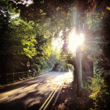 Sun through trees #sun #tree #trees #forest #road #cars #train #trainstation #whiteabbey #northernireland #ireland #iphone #iphone4s #iphonography #summer #tagsforlikes #random #photography #photooftheday #sky #l4l #apple #effects