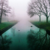 On a foggy morning, I shot this picture.