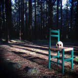 Skull on seat of green chair in woods