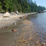 The shore line of Crescent Lake in Oregon looks so inviting on a hot summer day