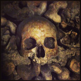 A human skull in the catacombs beneath Paris