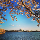 USA, Washington DC, Thomas Jefferson Memorial