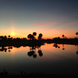 Beautiful Sunrise in Boca Raton with Palm trees reflection in the lake