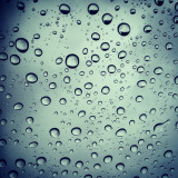 Perfectly aligned raindrops.