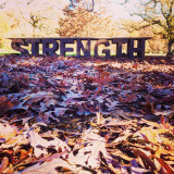 Fall leaves in front of strength display at he arboretum