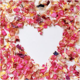 Pink dried petals in a heart shape