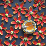 Tea and orange tulip petals arranged in a pattern
