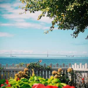 Garden with view of Mackinac Bridge, Michigan