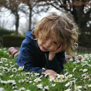 Little boy playing in the spring daisies