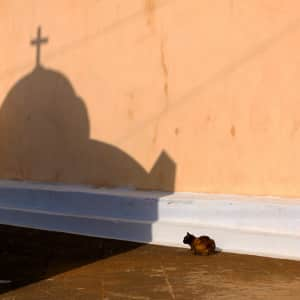 I turned a corned in Mykonos and spotted this cat and the wonderful shadow of the nearby church
