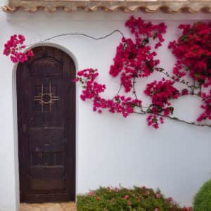 Lovely door from Mallorca