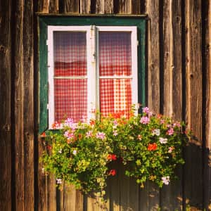 A lovely window from Austria