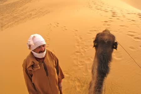 A guy and his camel