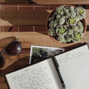 A journal sits on a table with a plant and sunglasses