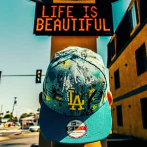 Life is beautiful with dodgers