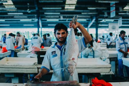 // at fish market, dubai //