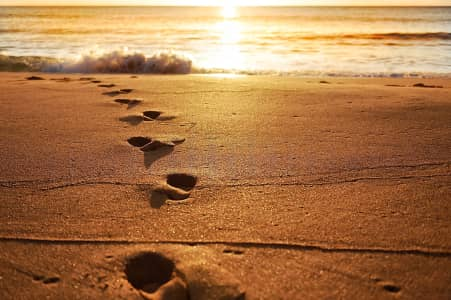 Footprints at dawn...