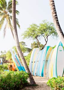 Surfboards paddle boards ready to be rented and used at the beach