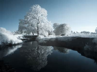Taken in infrared