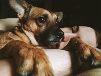 My two loves; I captured this of them minutes after waking up. Oh, and our dog Baxley just loves morning snuggles.