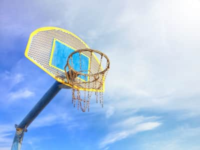 La canasta / The basket