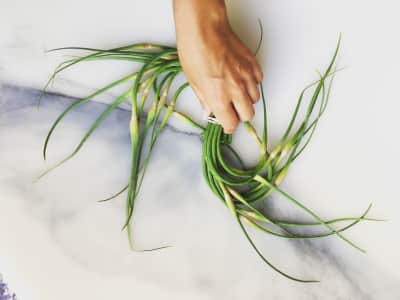 Garlic scapes, market, organic food