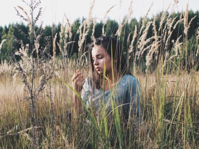 Dreaming on a Field