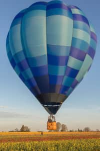 Morning hot air balloon over tulip fields.......