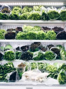 Hydroponic vegetables on shelf
