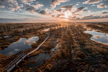 Early morning autumn sunrise in the bog Kemeri,Latvia