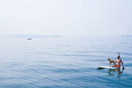 Man and pet dog out on a paddle board surfboard on the water, hazy, smokey foggy sky. RLTheis