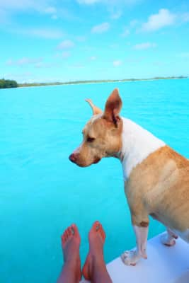 Chilling out with cuty in Bora Bora Island<3