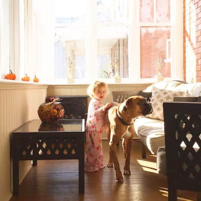 Toddler and her Dog