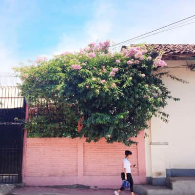 Pink wall, blue sky and a girl walking by