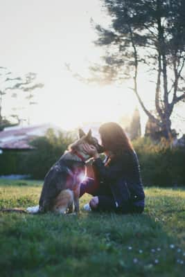 Dog and humain in nature