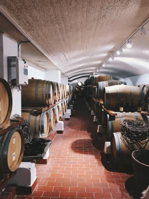 Vine barrels at the winery in Santorini.