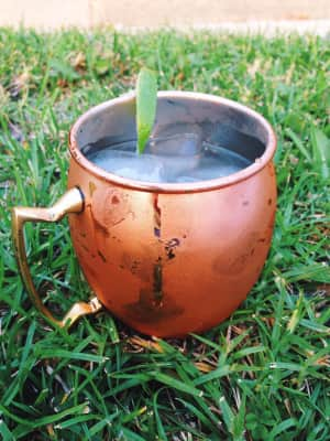 Moscow mule in a copper mug.
