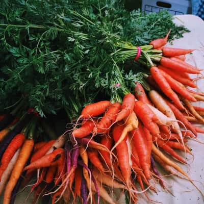 Carrots at the local markets
