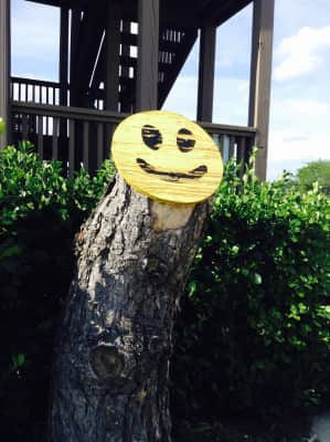 Even Trees can smile.