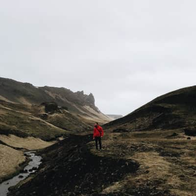 Man in red jacket standing in a field in Iceland