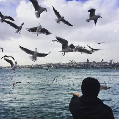 Last day of 2015 from the asian side, Istanbul
