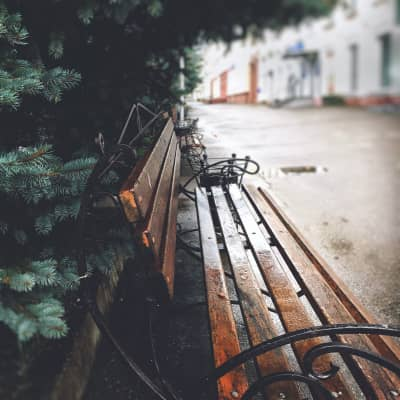 The bench in a secret Siberian city in the middle of the taiga.