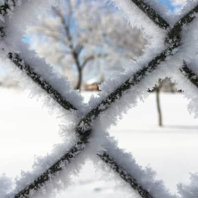Winter fence