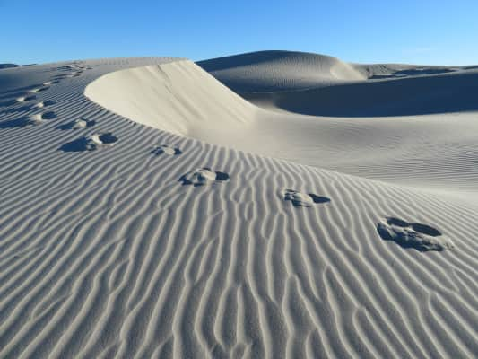 sand dunes with some foot prints on the top